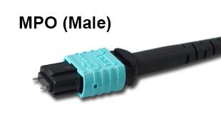 MPO_male